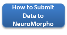 How to Submit Data to NeuroMorpho