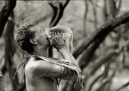Black and white photograph of man with palm fronds around his neck blows into a conch shell during the Makahiki.