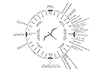 In this chart, a circle encloses a bird. Constellations, directions, and sunsets at different times of year are listed around the circle.