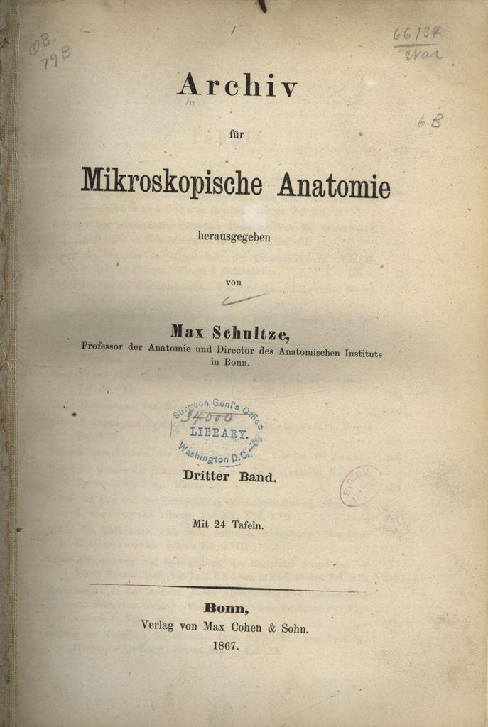 Großartig Brutto Und Mikroskopische Anatomie Zeitgenössisch ...