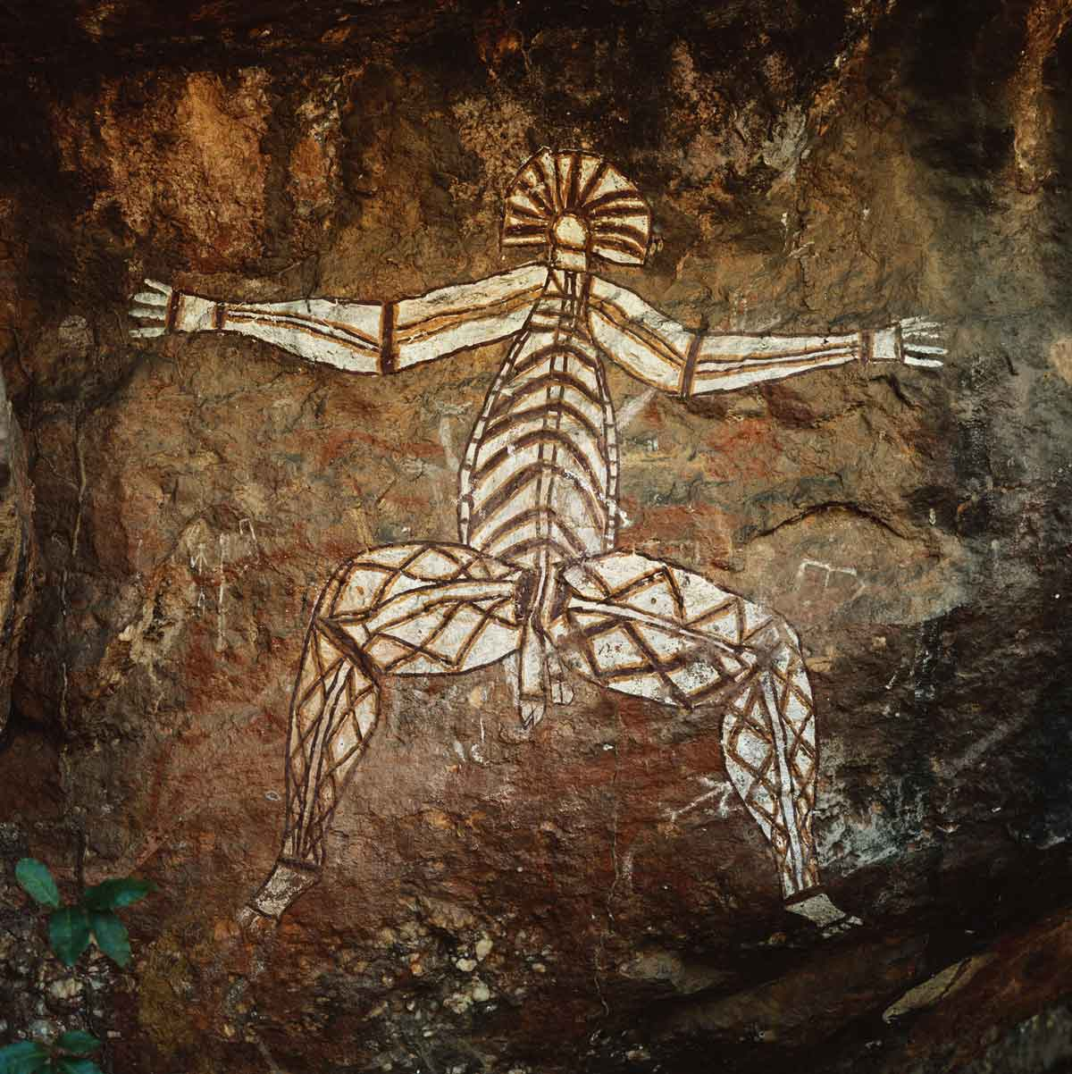 dream anatomy gallery aboriginal rock painting