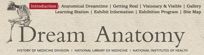 Dream Anatomy Introduction History Of Anatomy