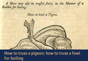 <a href='/gallery/fireandfreedom/explore/artoftrussing/d/'>4. How to truss a pigeon; how to truss a fowl for boiling</a>                         <h4>How to truss a pigeon; how to truss a fowl for boiling from <em>Young Woman's Best Companion</em>, 1770</h4> 						<h5>Courtesy National Library of Medicine</h5>                         <p>Pigeons were commonly eaten in the 18th century. Jackson explains here how to truss a small pigeon using a single skewer passed between 'the brown of the leg and the bent of the thigh.' She also describes how to truss a fowl for boiling without using any skewers. The cook must 'beat down' the breastbone, cut off the 'claws of the feet,' cut a hole in the apron just above 'the sideman,' and put the joints of the leg into the body</p>