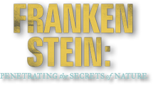 Frankenstein: Penetrating the Secrets of Nature