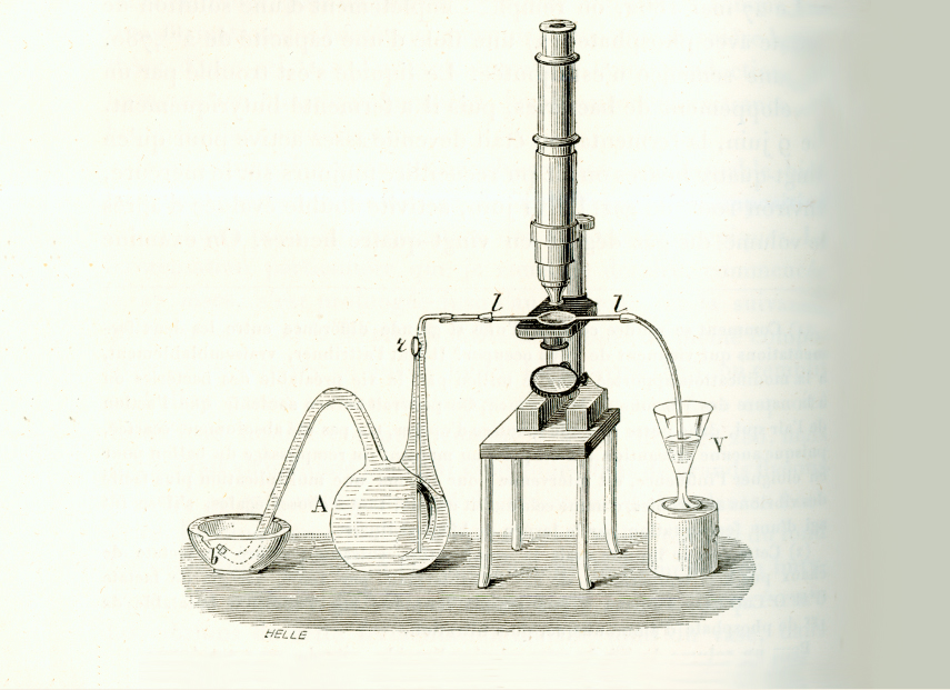 Drawing of a laboratory set up linking a Pasteur flask to a microscope using rubber tubing.