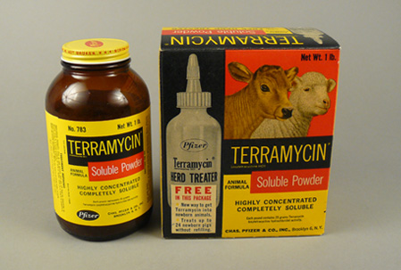 Opposite side of box of Terramycin powder with picture of calf and sheep.