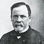 Black-and-white headshot of Pasteur with a beard