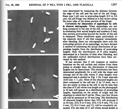 Excerpt from journal article with images of E. Coli bacteria interacting with one another with their flagella