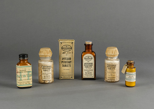 Five labeled glass bottles and one box containing pituitary gland tablets and powders.