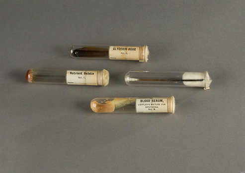 Four glass test tubes with paper labels and cotton plugs. Dried culture media is in three tubes and a metal cotton swab is in the fourth.