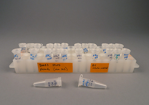 White plastic test tubes with caps in white plastic test tube holder.  Tubes and holder have labels written on them in ink.