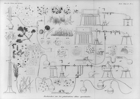 Black and white drawing of various flasks, laboratory set ups, and microorganisms from Louis Pasteur's research on fermentation.