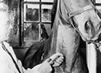 Man in a lab coat injecting a horse in the neck.