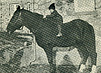 Black and white photograph of a child on the bare back of a dark colored horse in front of a stone building.