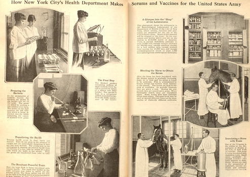 Black and white magazine spread with photographs of women working with laboratory flasks and men bleeding horses and injecting them with toxins.