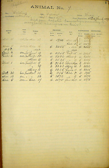 Page from a ledger with printed headers, lined columns and rows, and handwritten notations.