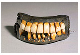 front view of George Washington's teeth open