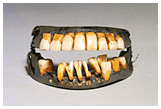 front view of George Washington's teeth closed