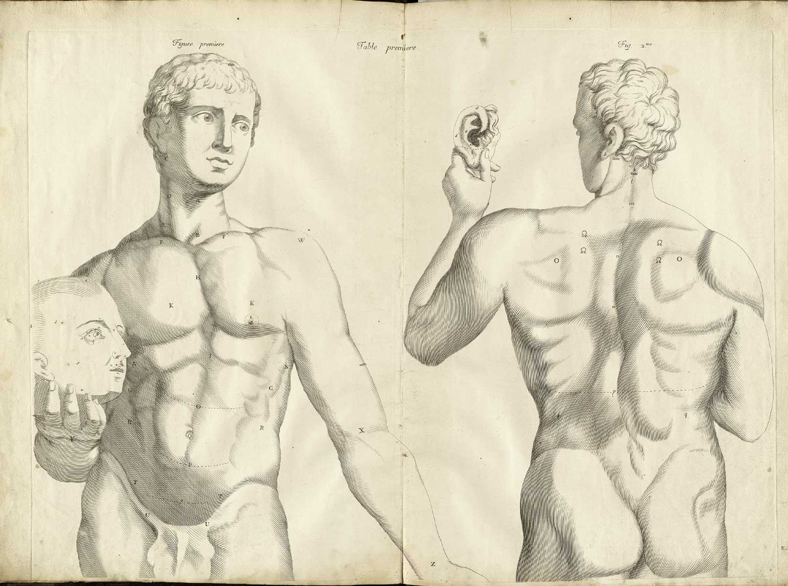 Historical Anatomies on the Web: Browse Titles