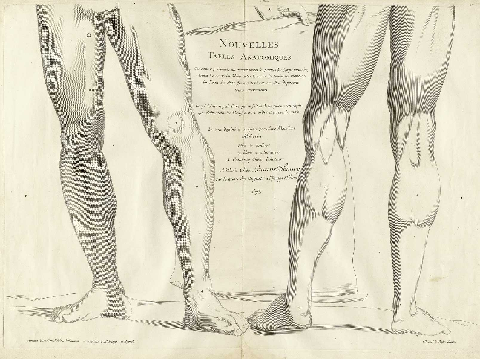 Historical Anatomies on the Web: Amé Bourdon Home