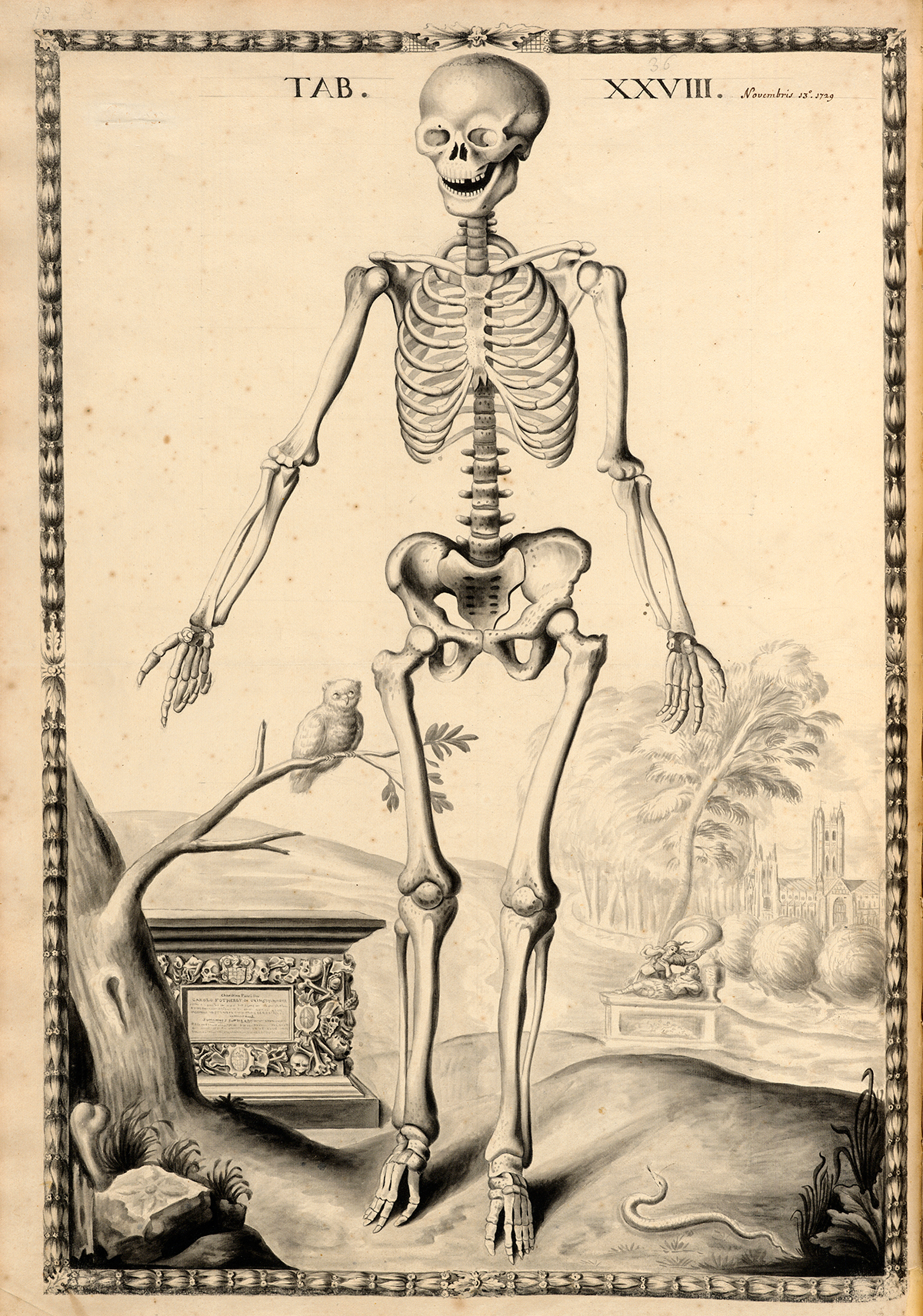 Historical Anatomies On The Web Browse Titles