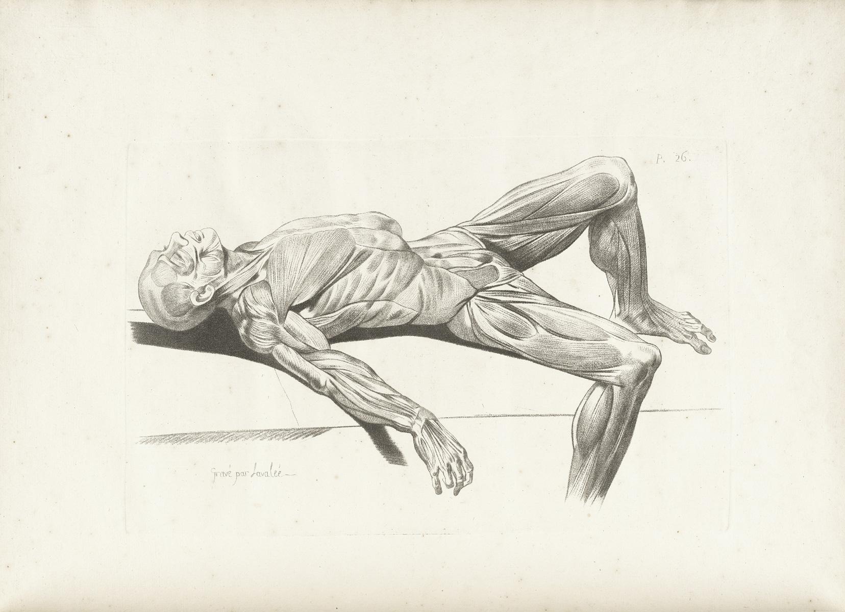 man laying down drawing 70265 tweb