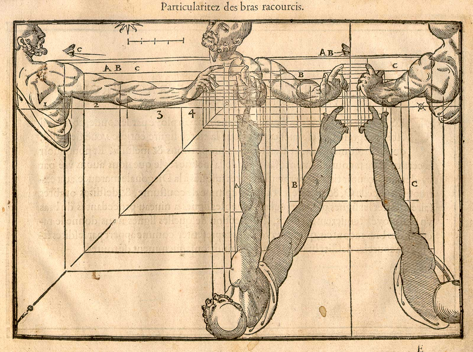 JF Ptak Science Books: An Interesting Three-Part Perspective, 1560