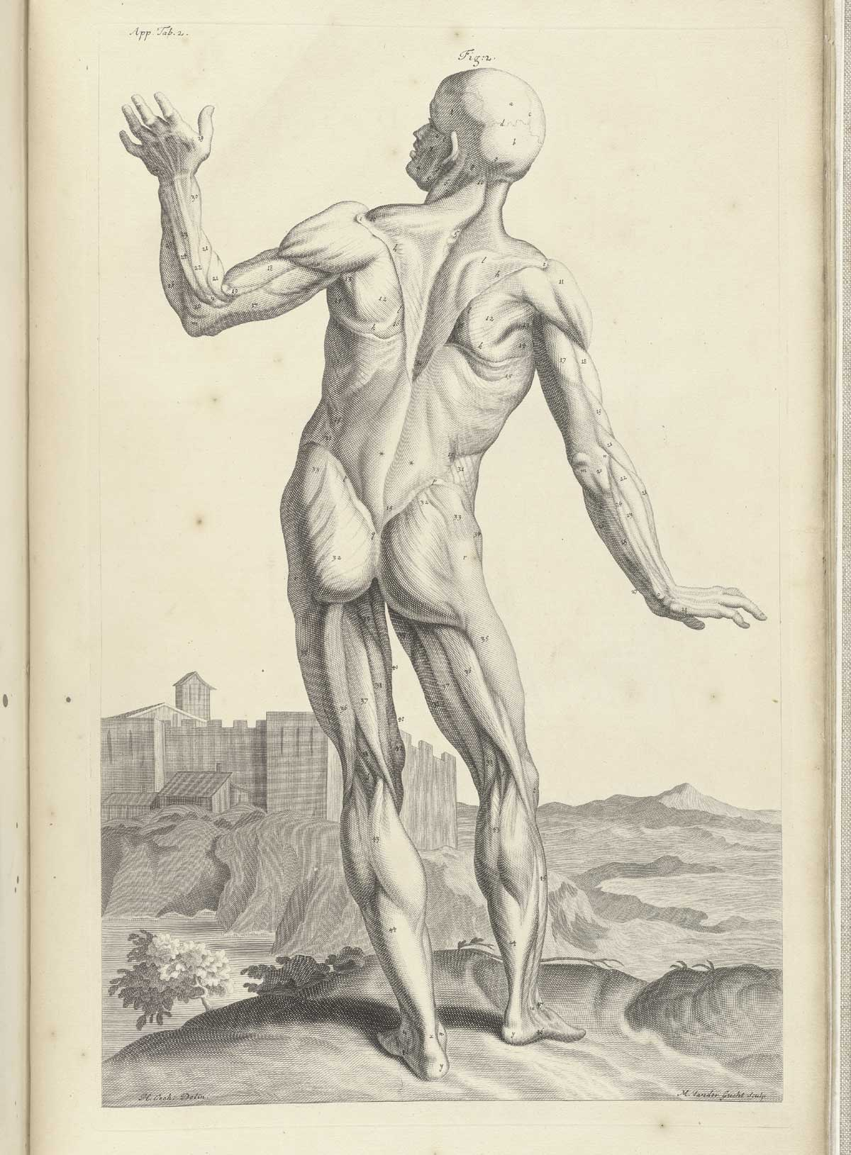 Historical Anatomies On The Web William Cowper Home