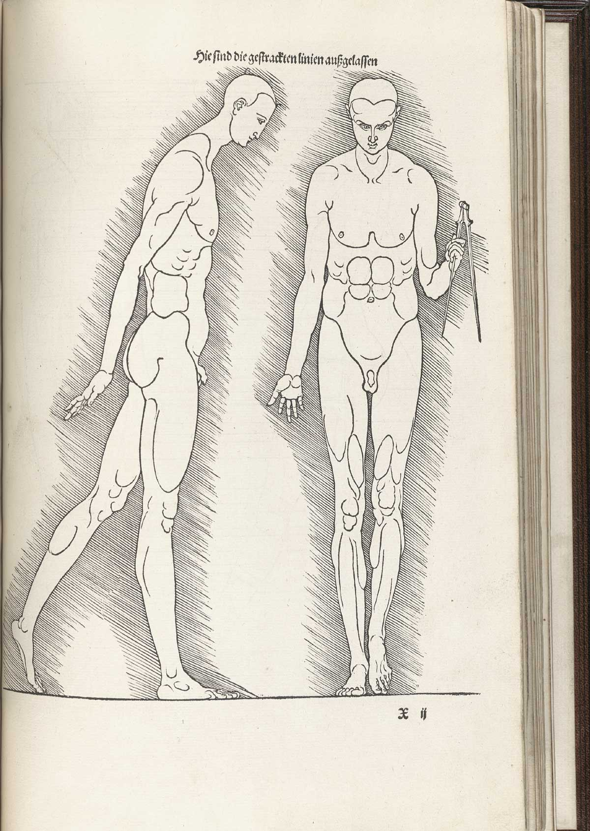 Historical Anatomies on the Web: Albrecht Durer Home