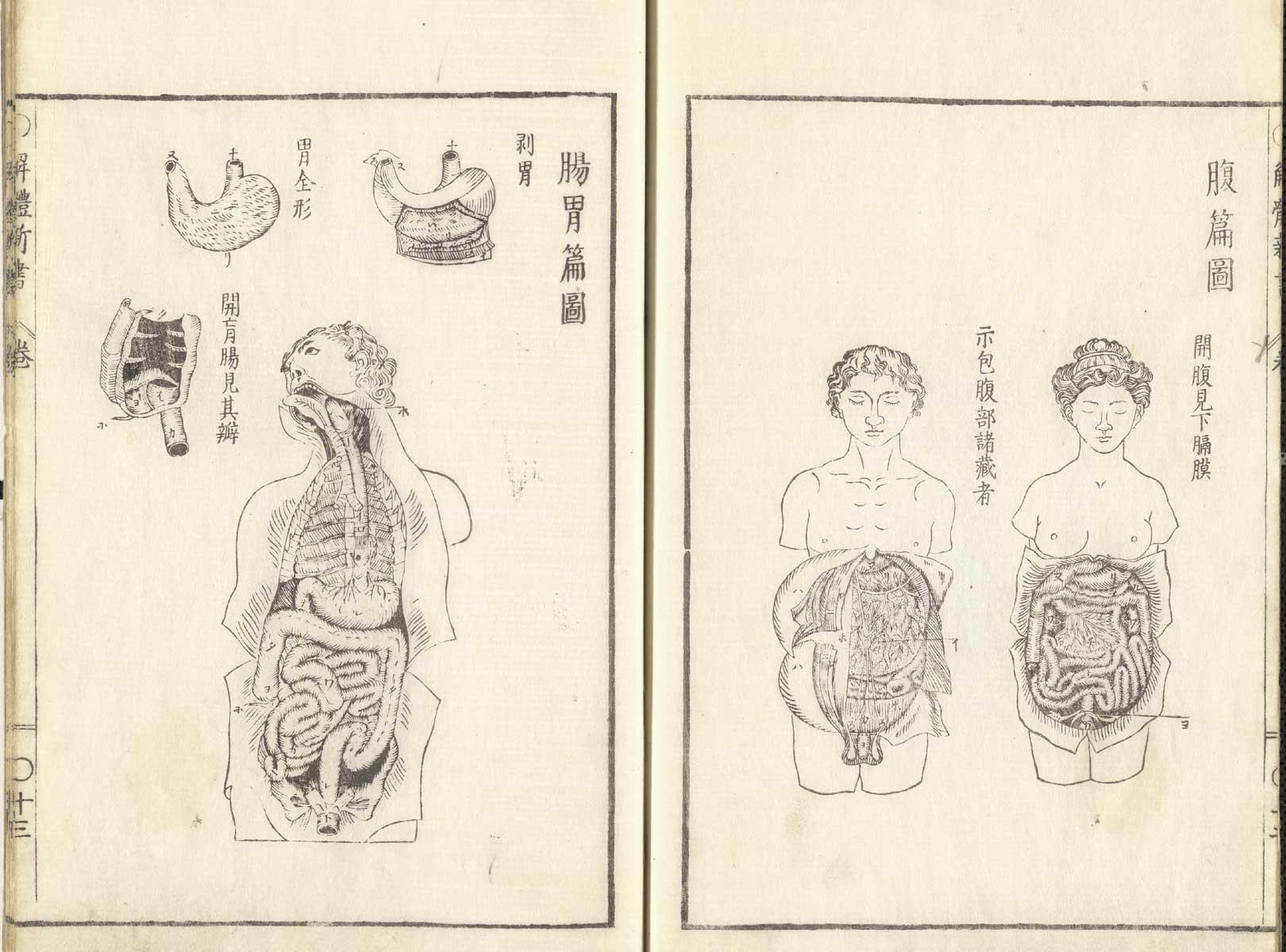Historical Anatomies on the Web: Johann Adam Kulmus Home on