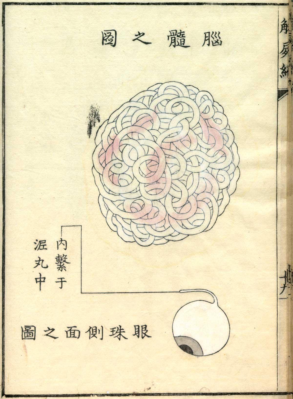 Historical Anatomies on the Web: Shinnin Kawaguchi home