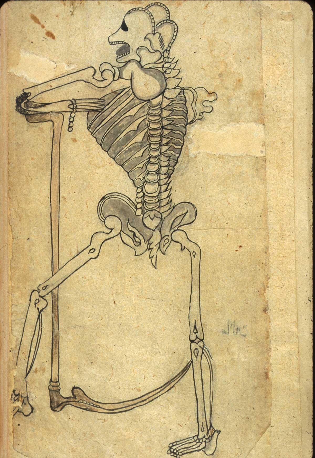 Historical Anatomies On The Web Persian Anatomies