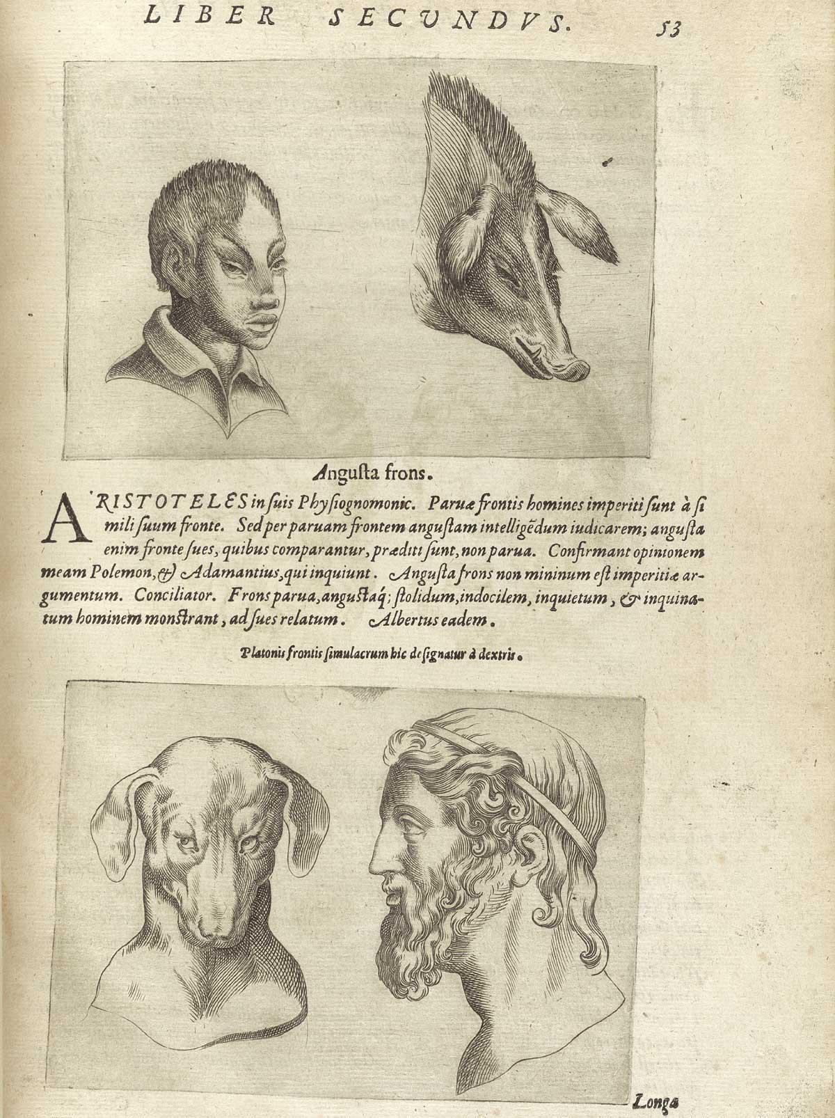 http://www.nlm.nih.gov/exhibition/historicalanatomies/Images/1200_pixels/porta_p53.jpg
