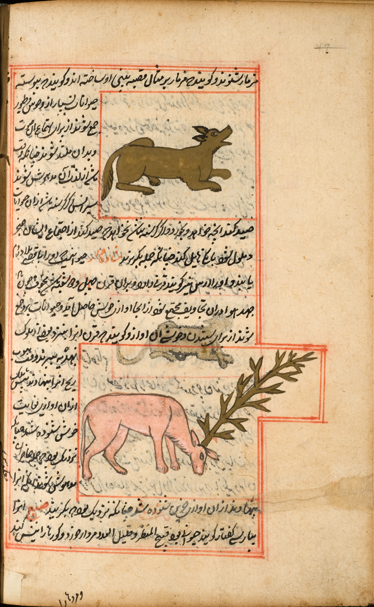 Historical Anatomies On The Web Historical Anatomies On The Web Al
