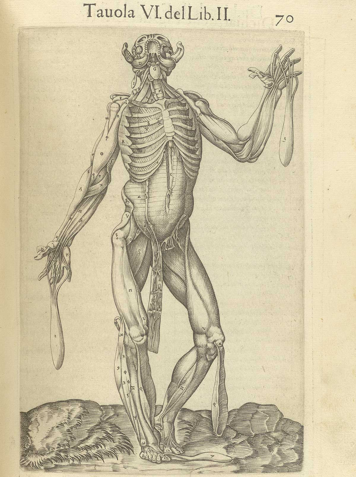 Historical Anatomies on the Web: Juan Valverde de Amusco Home