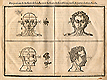 Woodcut illustration with four parts, showing two male heads facing the viewer in the top two quadrants with proportional lines and measurements applied to the one on the left, and at bottom two heads facing to the right with proportional lines and measurements applied to the one on the left, from Jehan Cousin's Livre de pourtraiture, NLM Call no.: WZ 250 C8673L 1608.
