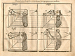 Woodcut illustration showing twelve different views of feet from many different angles, including several different side views with some proportional, from Jehan Cousin's Livre de pourtraiture, NLM Call no.: WZ 250 C8673L 1608.