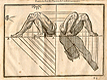 Woodcut illustration of three images of the musculature of the legs with bent knees viewed from the sides, with measured proportions of each shown, from Jehan Cousin's Livre de pourtraiture, NLM Call no.: WZ 250 C8673L 1608.