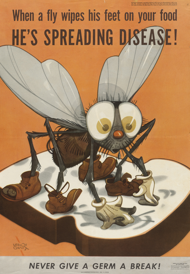 Dengue Awareness Slogans In English