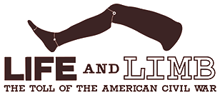 Life and Limb: The Toll of the American Civil War home