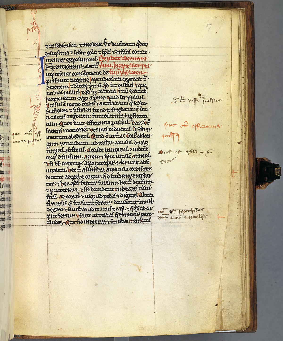 Medieval Latin Translation