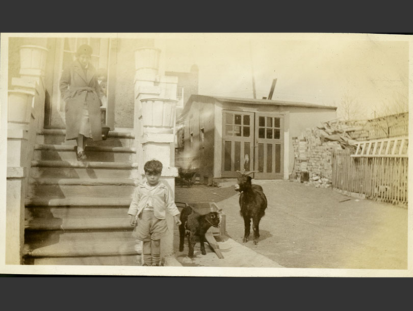 Female nurse coming down front steps of a walk-up house, young boy and two goats in alleyway.