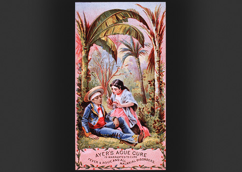 A man is laying down while being fed a drink by a woman in the middle of a junglescape.