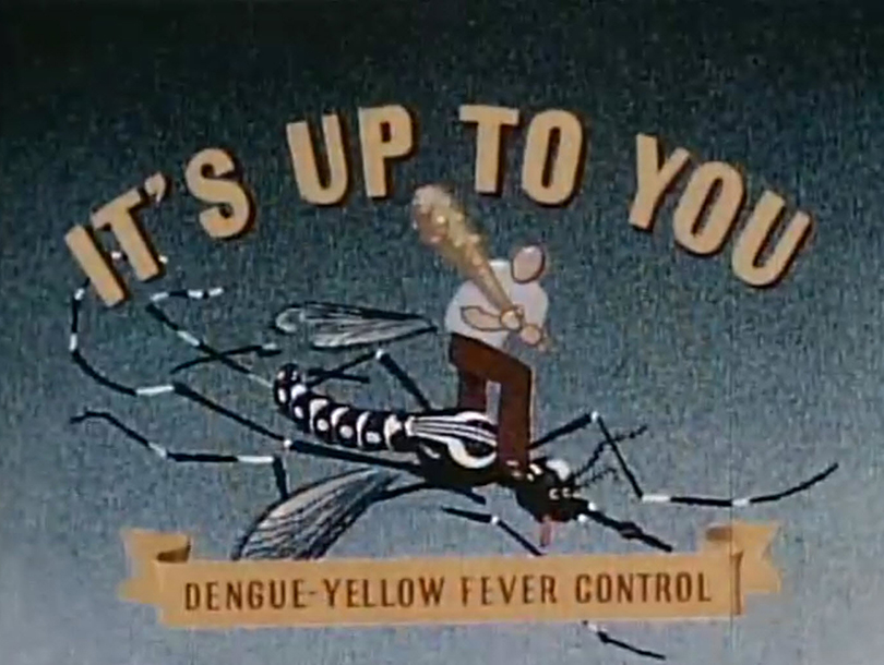 "A man stands atop large mosquito with a bat in his hand; the words ""It's up to you: dengue-yellow fever control"" surround him"
