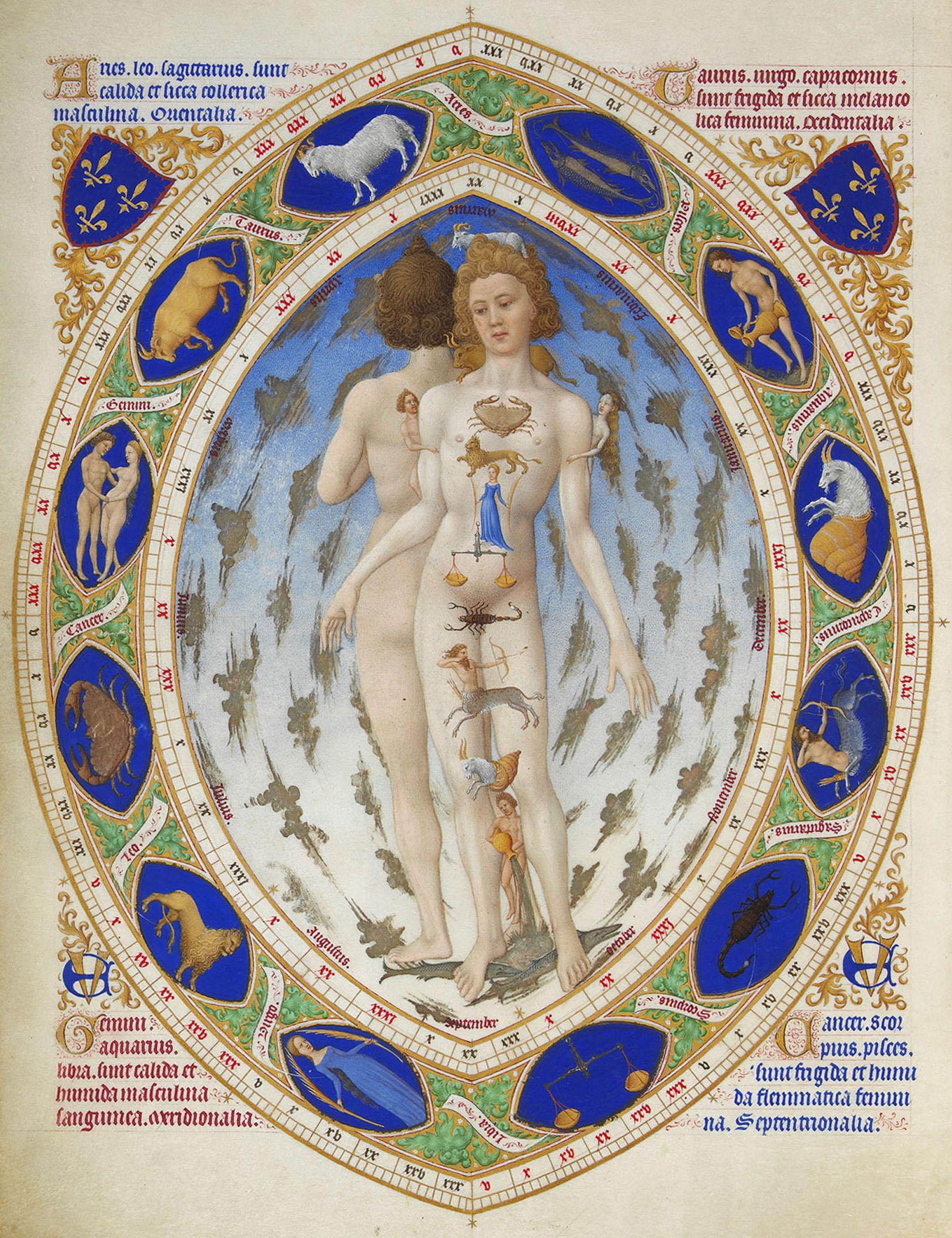 El hombre, el microcosmos del universo (imágenes de la anatomía oculta) OB0057