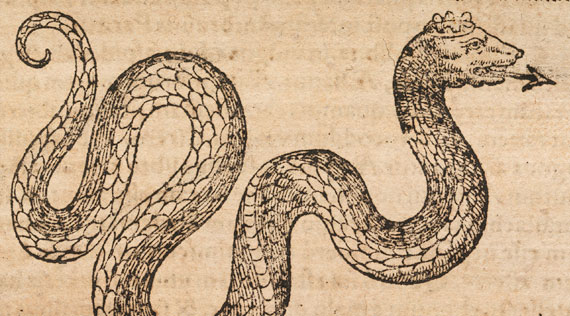 Illustration of a serpent with an arrow as a tongue.