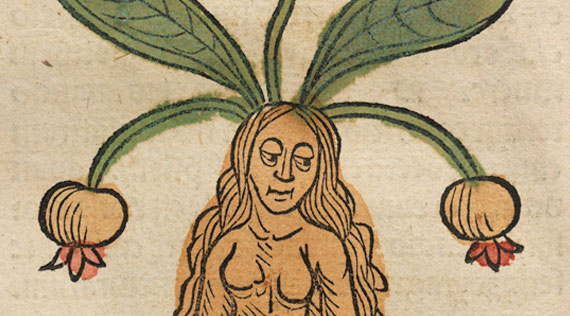 A long haired woman with leaves and bulbs coming out of her head.