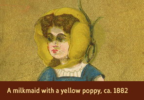 <a href='onlineactivities12.html'>2. A milkmaid with a yellow poppy, ca. 1882</a>     <h3>Advertising trade card for Mrs. George H. Davis, a florist at Boston Rose Buds, Providence, RI, ca. 1882</h3>     <h4>Courtesy National Library of Medicine</h4>     <p>A yellow poppy encloses a milkmaid&#8217;s head on this trade card.  Yellow poppies represented wealth and success in the 1880s. On the back, the card lists the business of Mrs. George H. Davis, a florist.</p>