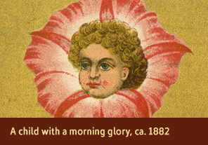 <a href='onlineactivities14.html'>4. A child with a morning glory, ca. 1882</a>     <h3>Advertising trade card for Dr. Fair&#8217;s &ldquo;Hair Care,&rdquo; Providence, RI, ca. 1882</h3>     <h4>Courtesy National Library of Medicine</h4>     <p>A bright pink morning glory frames the child&#8217;s golden curls on this trade card. Morning glories were associated with love and affection in the 1880s. A poem on the back of the card describes a maid of &ldquo;wondrous beauty&rdquo; whose hair was destroyed by a fever, then restored upon the use of Dr. Fair&#8217;s Hair Care.</p>
