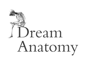Text: Dream Anatomy; Image of a skeleton sitting on the letter D in Dream